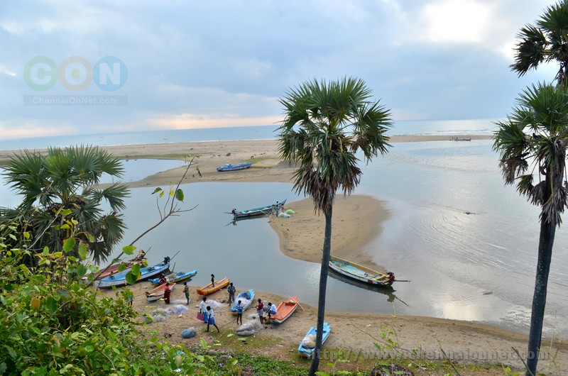 A view of backwaters and the beach where fishermen parked their boats after fishing at Alamparai Fort in ECR Road.