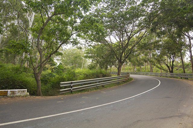 The road that lead to Yelagiri Hills.