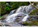 Killiyur Falls at Yercaud Photos